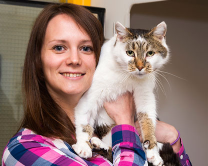 Microchip reunites cat with her happy owner six years later