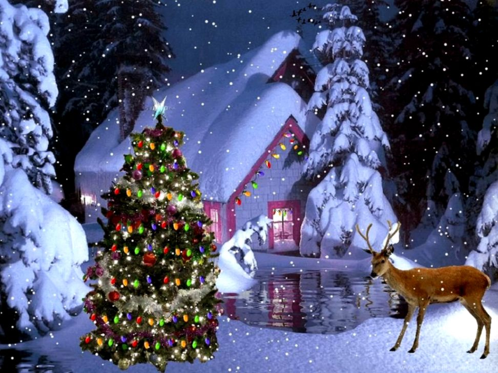Free Live Christmas Wallpaper Wallpapers New