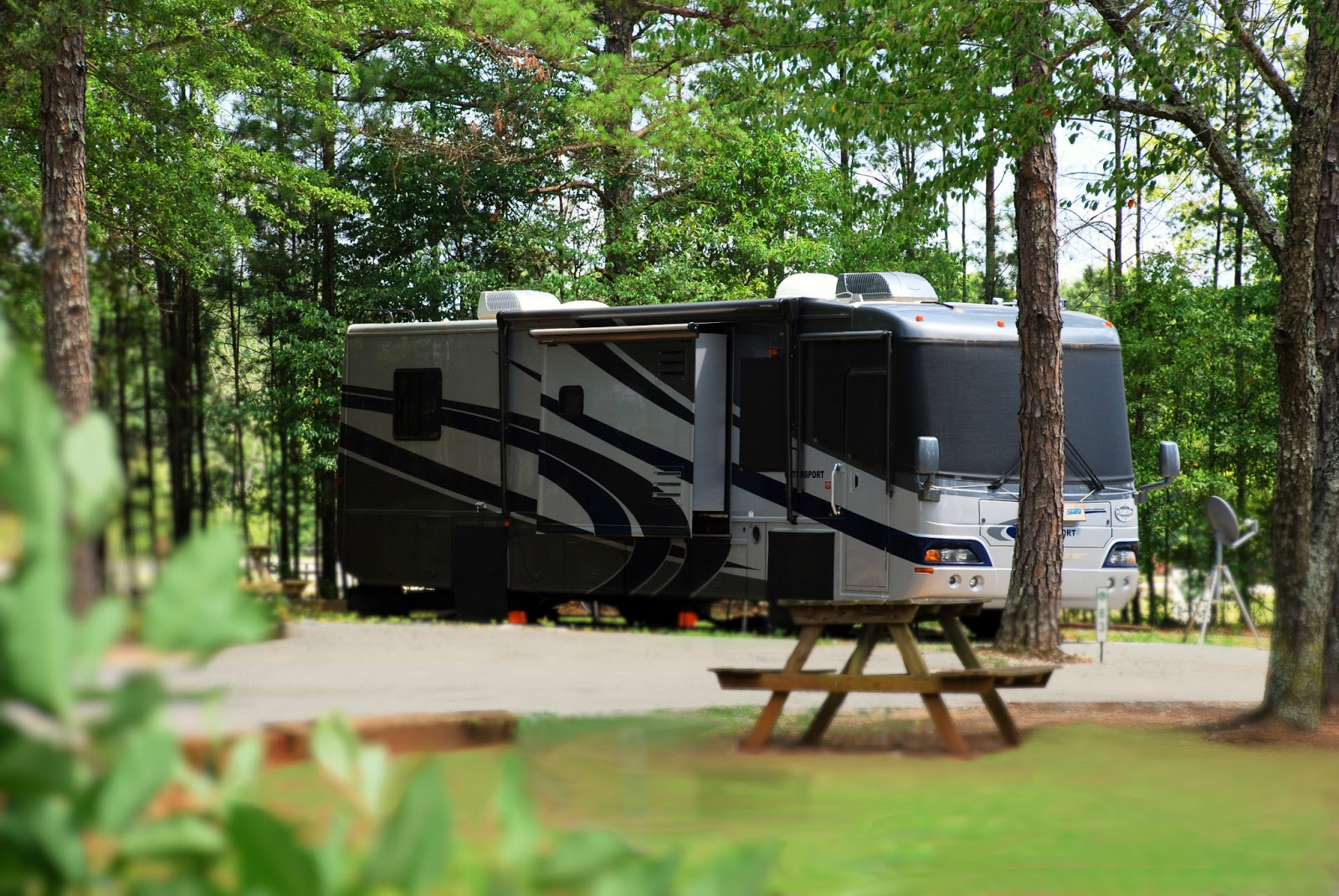 albany camping georgia resort rv: georgia ga rv parks rv campgrounds