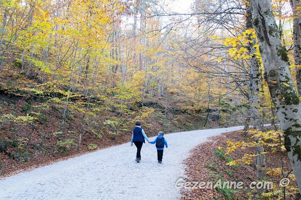 Yedigöller yollarında anne oğul el ele dolaşırken, Bolu