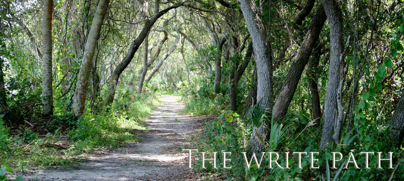 The Write Path