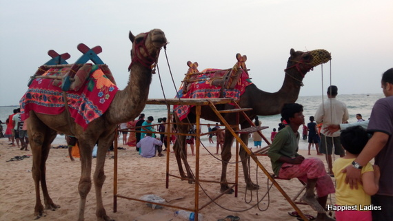 things to do in malpe beach camel ride