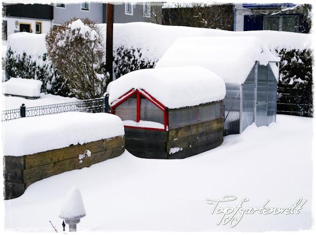 Gartenblog Topfgartenwelt Winter: verschneite Hochbeete und Gewächshaus
