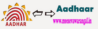 E-Aadhaar Card Free Download - Aadhaar Card Status- Aadhaar Data Update - Aadhaar Seeding