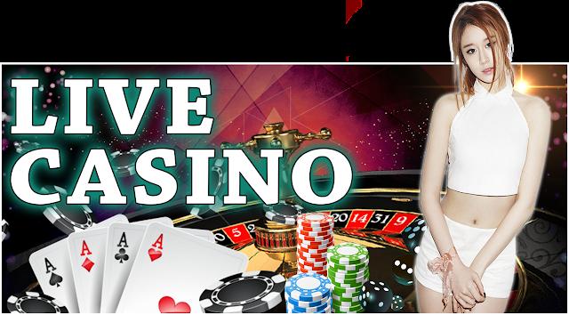 cool cat casino reviews