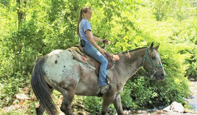 Mountain Creek Riding Stables in the Pocono Mountains Pennsylvania