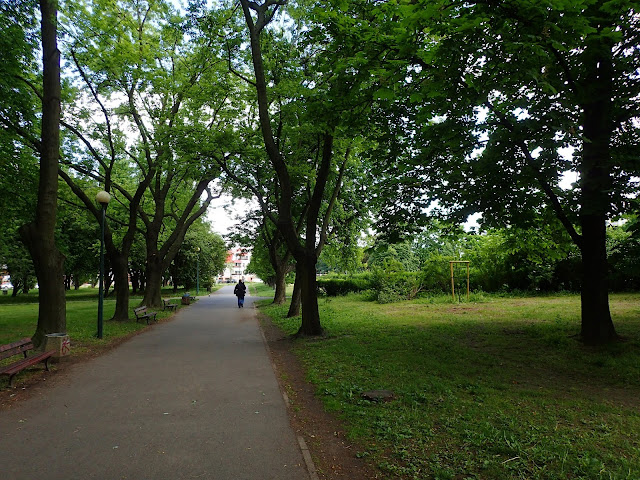 Alejka w Parku Szczęśliwickim