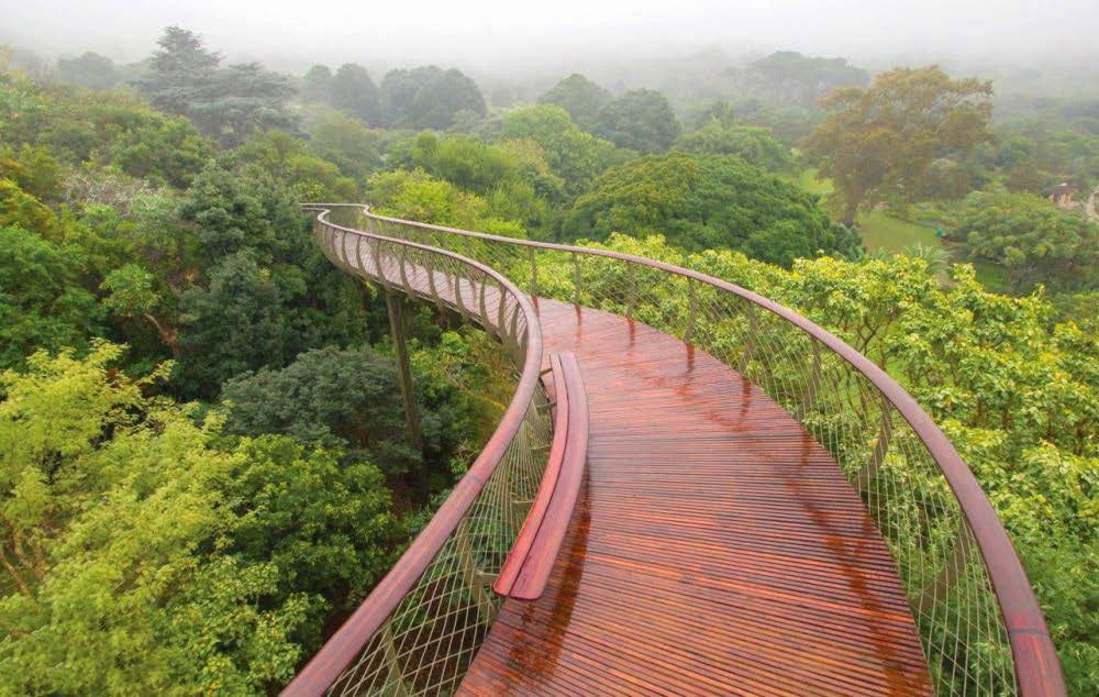 10 Inspirational Botanic Gardens | Kirstenbosch National Botanical Garden, Cape Town, South Africa