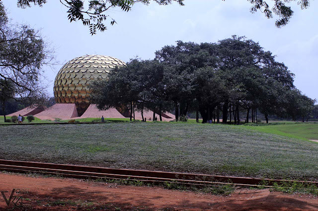 Matrimandir & the Magical Banyan Tree, Auroville