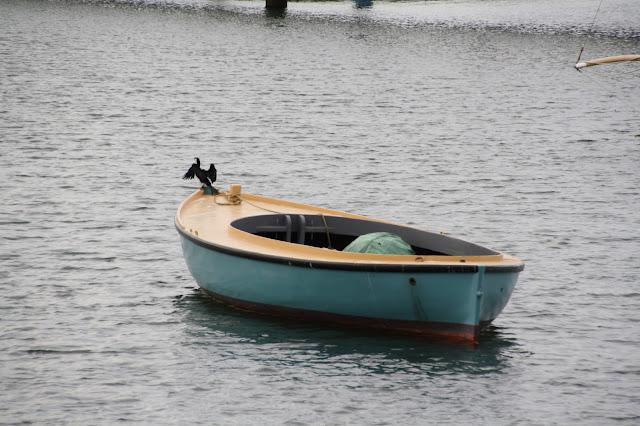 St Kilda Pier Cormorant