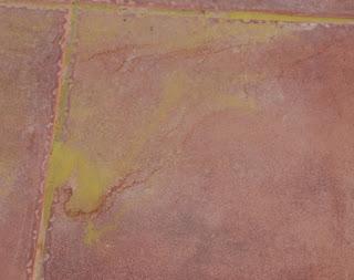 The Saharan sand almost looks green