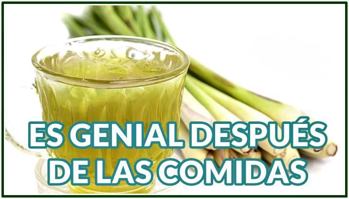 Bondades del té de Limoncillo