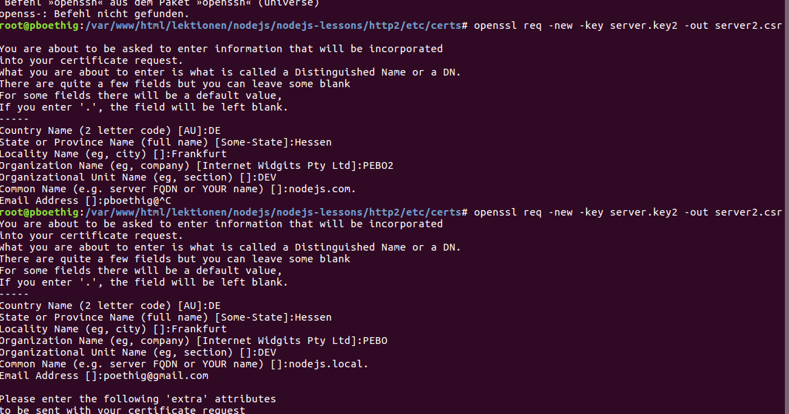 WebDev: openssl: create a self signed certificate for a local host entry