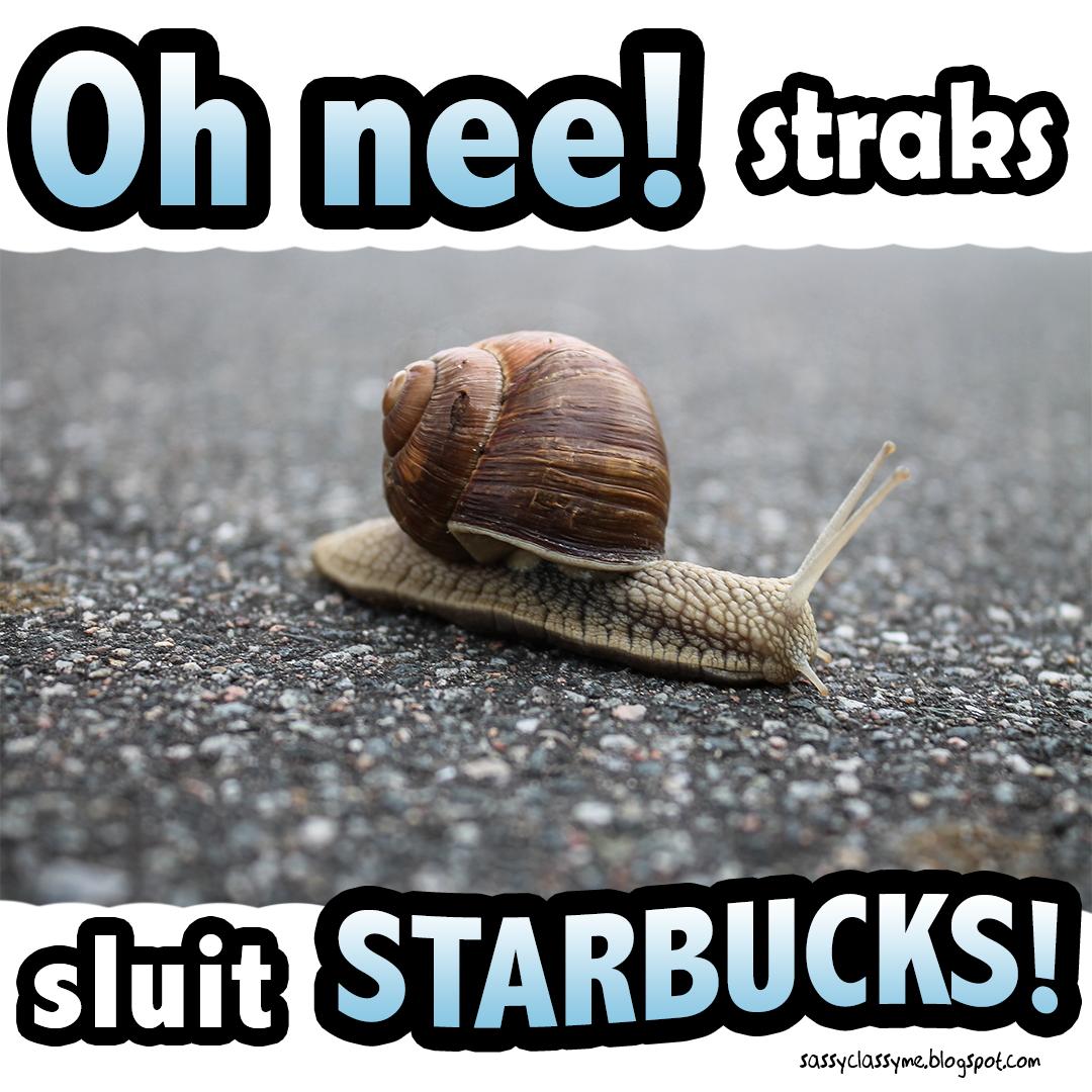 starbucks sluit the sassy classy me