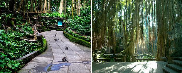 Paket Tour Bali Monkey Forest