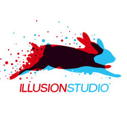 Logo I Selected Was From Illusion Studio A Computer Graphics That Specializes In 2 D And 3 Animation This Is Almost Split Complimentary