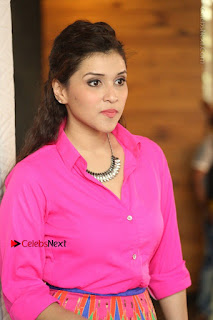 Actress Mannar Chopra in Pink Top and Blue Skirt at Rogue movie Interview  0159.JPG