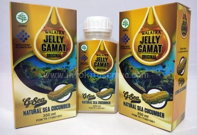 Jelly Gamat Original