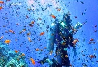 Pulau Abang, Barelang, Batam, Snorkelling