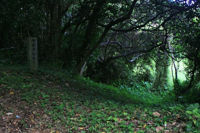 サシチムイのアガタヌカーの写真