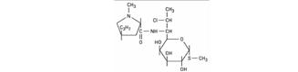 Klindamisin menghambat sintesis protein dengan cara mengikat secara reversibel subunit rib Klindamisin