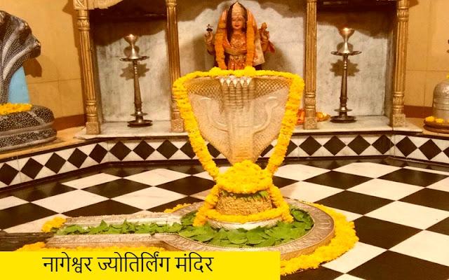 मंदिर में नागेश्वर ज्योतिर्लिंग मध्यम बड़े आकार का है जिसके ऊपर एक चांदी का आवरण चढ़ा है। ज्योतिर्लिंग पर ही एक चांदी के नाग की आकृति बनी हुई है। ज्योतिर्लिंग के पीछे माता पार्वती की मूर्ति स्थापित है।