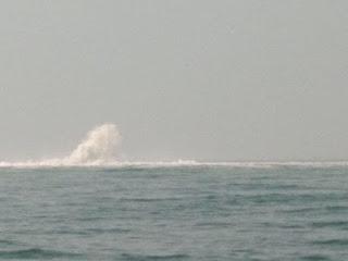 Pipa Gas Di Perairan Bojonegara Bocor, Kapal KPLP Amankan Perairan