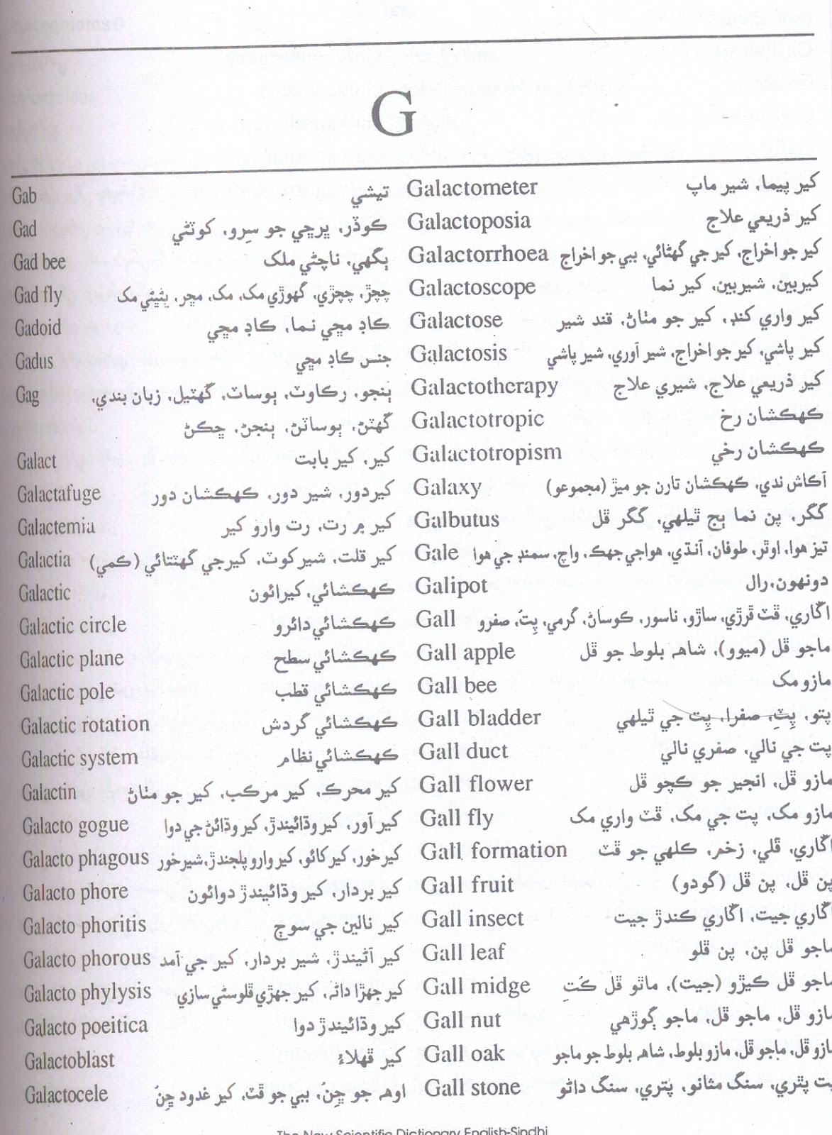 Pdf dictionary to english sindhi