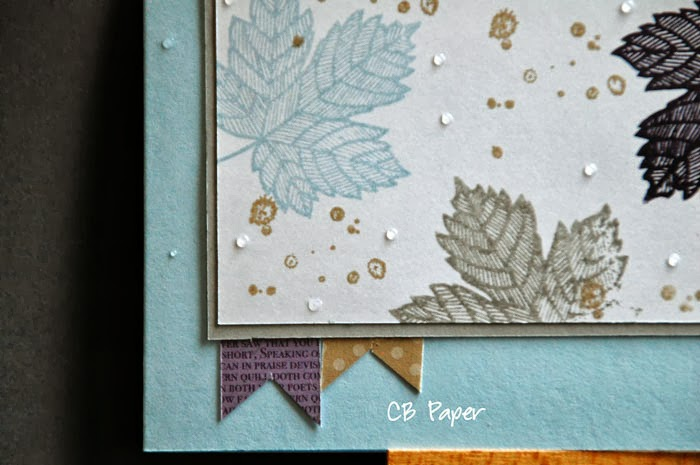 cb paper unabh ngige stampin up demonstratorin herbst. Black Bedroom Furniture Sets. Home Design Ideas