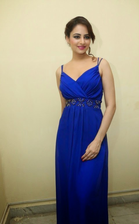 Actress Zoya Afroz Picture Gallery in Blue Long Dress  17.jpg