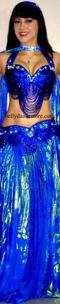 25b5698d3b Shiny Shimmy  The Costume Closet