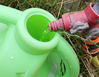 Trickling water into a watering can