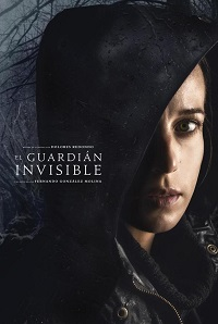 Watch The Invisible Guardian Online Free in HD