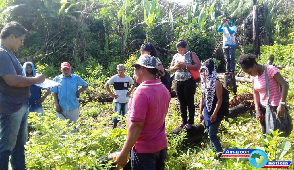 Sistema Agroflorestal é tema de curso de agentes ambientais no quilombo do Ariramba