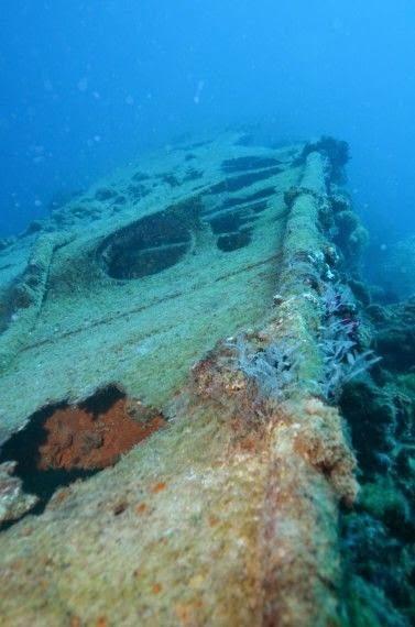 Best Places To Go Scuba Diving On Earth | SCUBA dive Yongala - Queensland, Australia