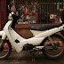 Honda Wave Alpha 110 (tough bike)