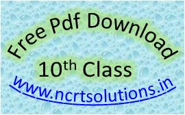 NCERT Solutions Class 10 PDF Free Download