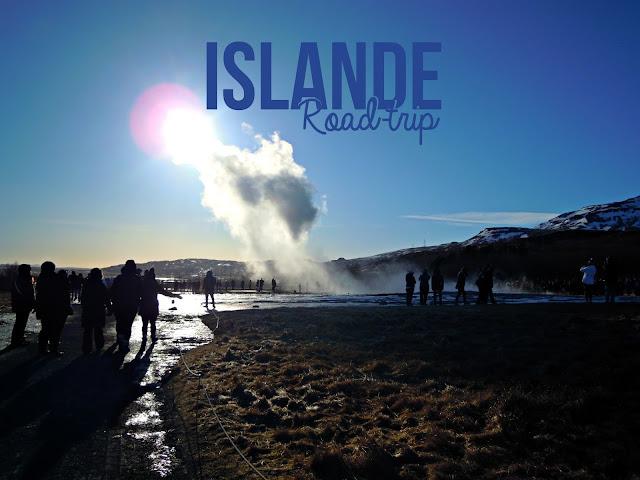 https://laplanquealibellules.blogspot.com/2018/03/road-trip-en-islande-1.html