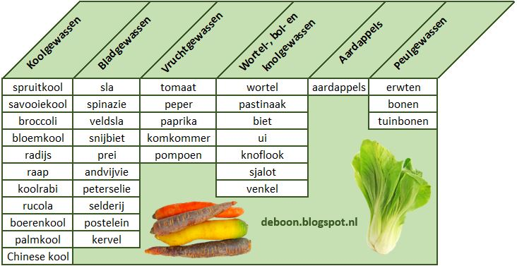 groentesoorten wisselteelt moestuin rotatieteelt