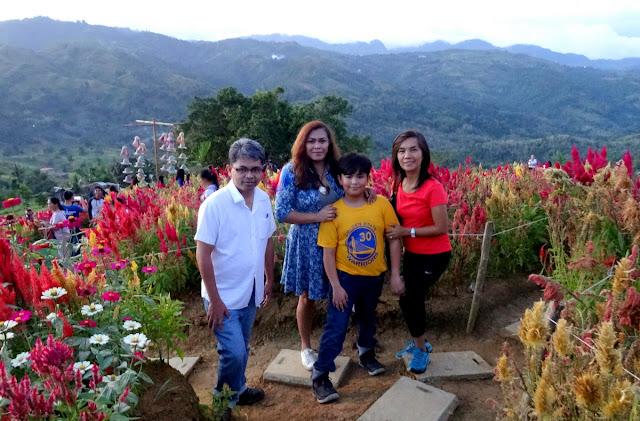 Sirao Flower Garden in Busay, Cebu