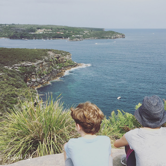 Spit to Manly bush walk
