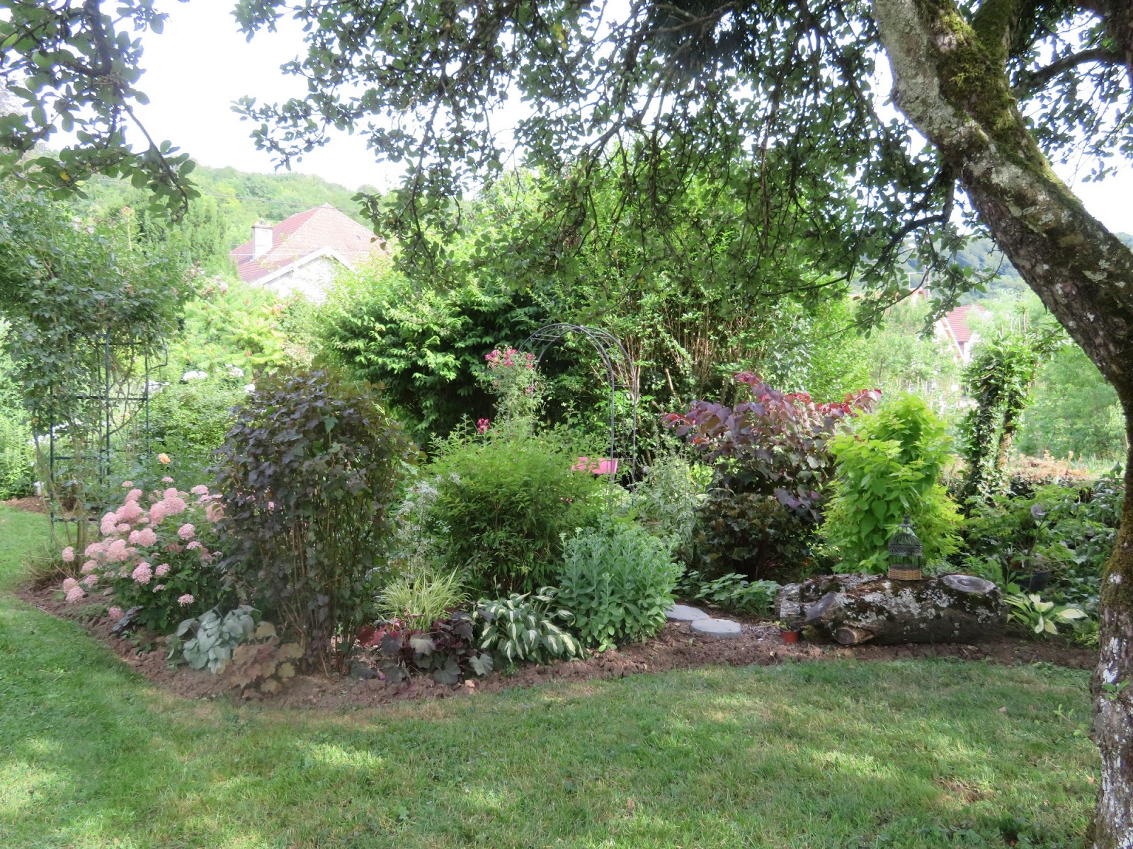 Mes motsdoubs mon jardin en juillet for Jardin 5 juillet biskra