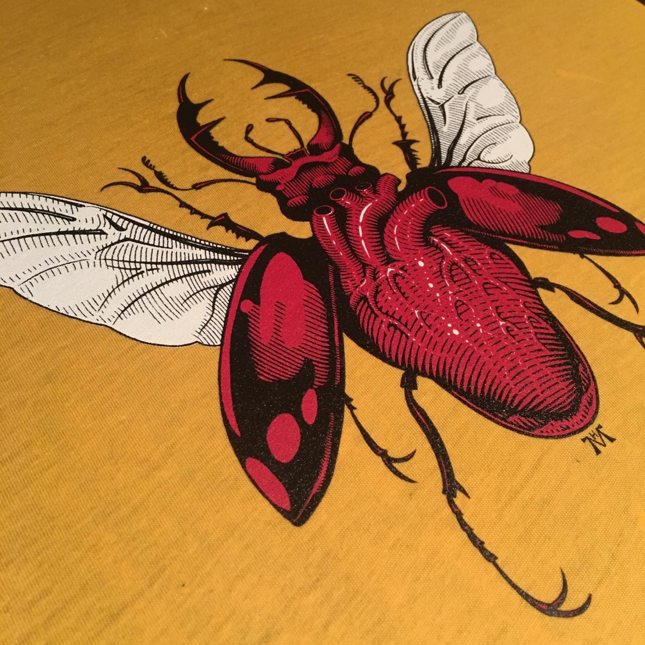 Madame Macabre: Ilustración: anatomía, escarabajos y calaveras con ...