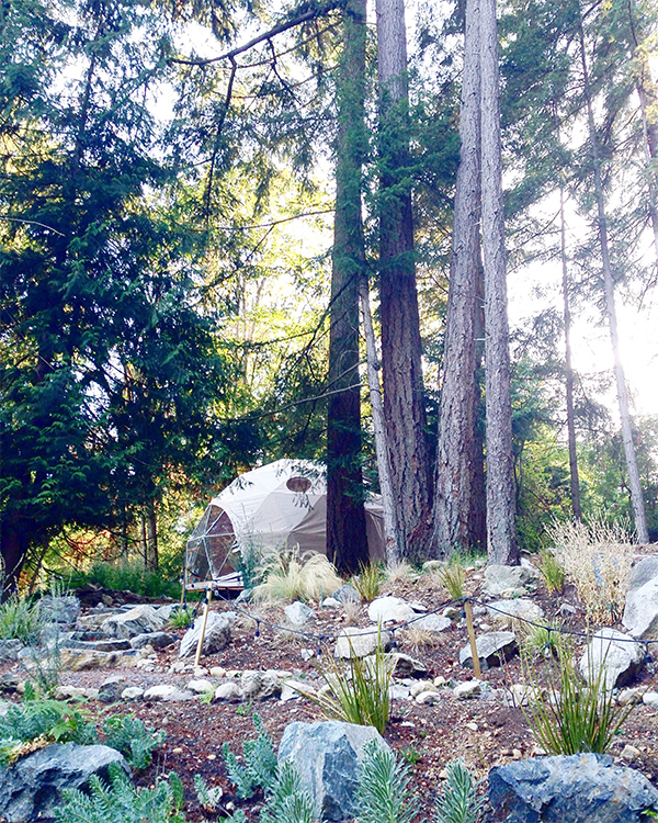 Yoga dome in the woods at Nectar Yoga Bed and Breakfast in Bowen Island, Horseshoe Bay, Vancouver.