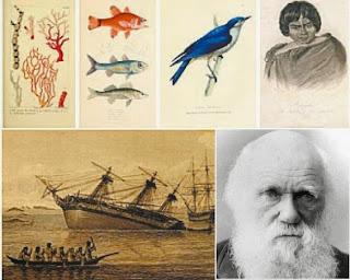 Resultado de imagen de el viaje de Darwin en el Beagle