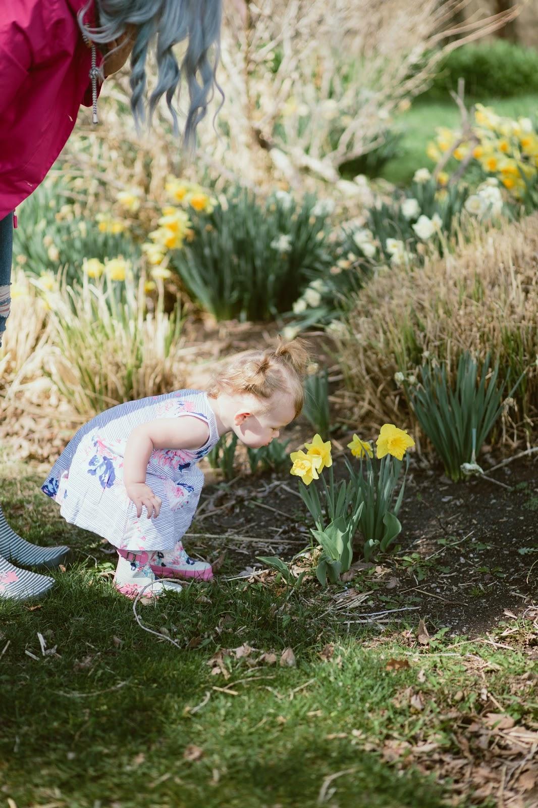 Smelling Flowers, Spring in Utah, Spring Flowers
