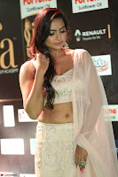 Prajna in Cream Choli transparent Saree Amazing Spicy Pics ~  Exclusive 024.JPG