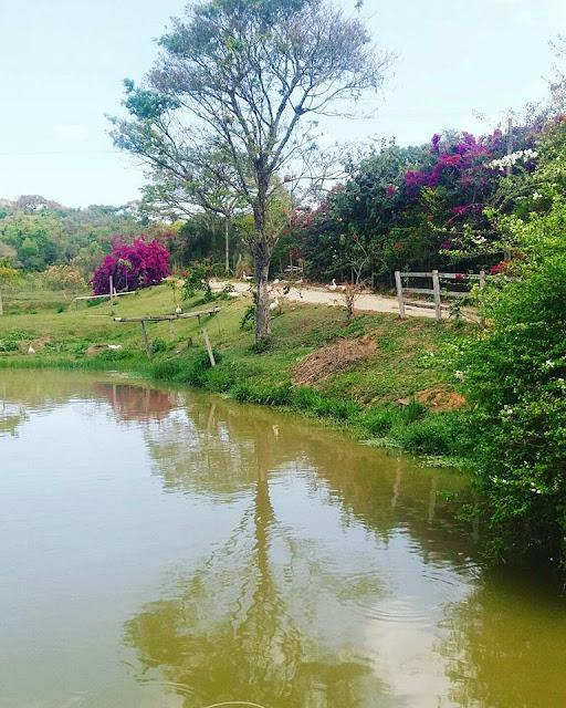 #feriado #finaldesemanaemfamilia #cachoeira #verdequetequeroverde