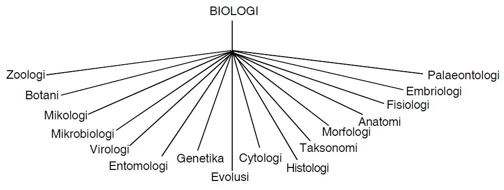 Bidang kajian biologi mencakup sangat luas sehingga para ilmuwan mempunyai spesifikasi tersendiri untuk mempelajari biologi secara parsial dalam memperoleh detail pengetahuan lebih luas. 200 Cabang-cabang Biologi Beserta Artinya | Ilmu Sains