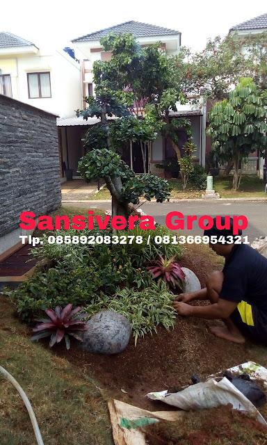 Jasa Pembuatan Taman Rumah Jakarta